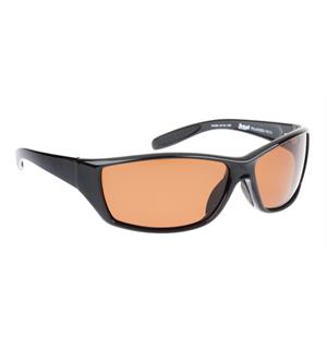 Polarized B2559/03T silver