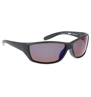 Polarized B2559/01T black